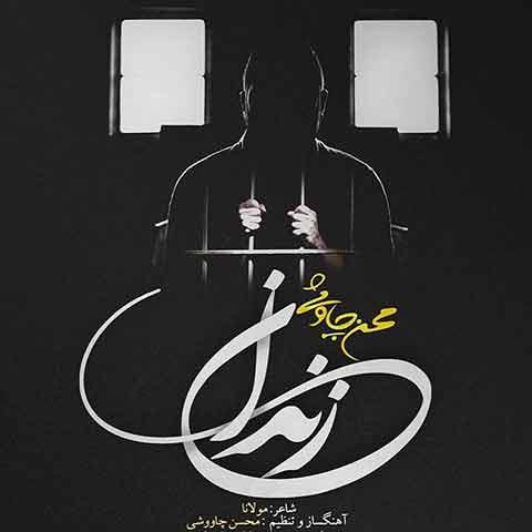 محسن چاوشی : زندان