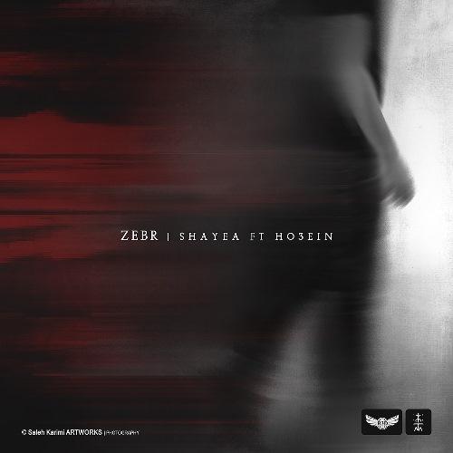 شایع و حصین : زبر