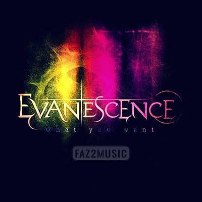 Evanescence : What You Want