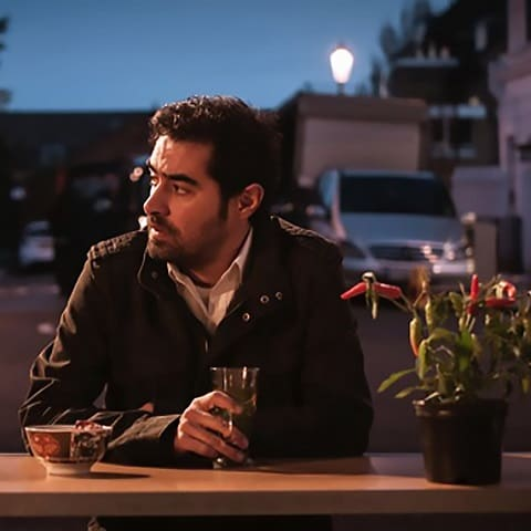 شهاب حسینی : شهزاده رویا
